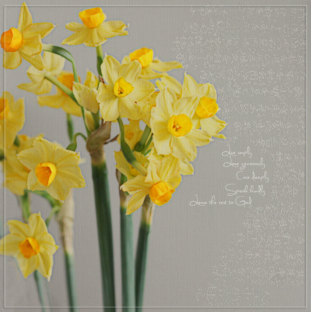 Daffodils.Live simply